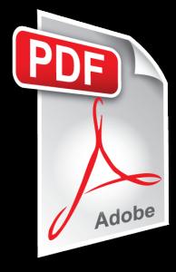 pdf_icon-194x300